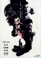 SPL 2: A Time For Consequences (2015) (DVD) (Hong Kong Version)