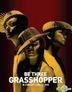 Be Three Grasshopper In Concert (2CD + 2DVD)