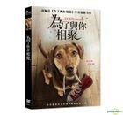 A Dog's Way Home (2019) (DVD) (Taiwan Version)