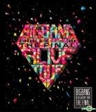 Big Bang - 2013 Big Bang Alive Galaxy Tour Live [The Final in Seoul] (2CD) (Limited Edition)