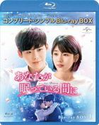 While You Were Sleeping (Blu-ray) (Box 1) (Japan Version)