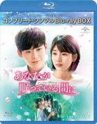 While You Were Sleeping (Blu-ray) (Box 2) (Japan Version)