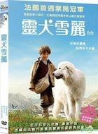 Belle et Sebastien (2013) (DVD) (Taiwan Version)