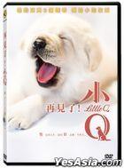 再見了!小Q (2019) (DVD) (台灣版)