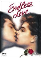 Endless Love (DVD) (First Press Limited Edition) (Japan Version)