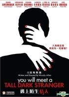 You Will Meet A Tall Dark Stranger (2010) (VCD) (Hong Kong Version)