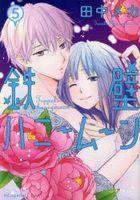 Teppeki Honeymoon 5