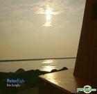 Kim Sung Su Vol. 1 - Peterfish