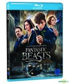 Fantastic Beasts and Where to Find Them (Blu-ray) (Korea Version)