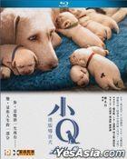 小Q (2019) (Blu-ray) (香港版)