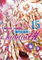 Saint Seiya - Saintia Sho (Vol.15)