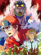 Cells at Work! BLACK Vol.3 (DVD) (Japan Version)