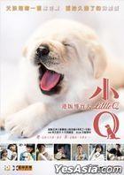 小Q (2019) (DVD) (香港版)