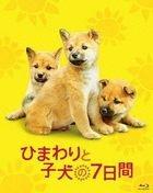 7 Days of Himawari & Her Puppies  (Blu-ray)(Japan Version)