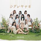 Shidare Yanagi [Type B] (SINGLE+DVD) (Japan Version)