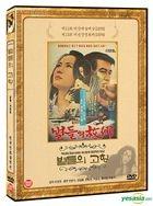 The Stars Heavenly Home (DVD) (Korea Version)