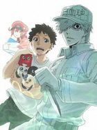 Cells at Work!! 2nd Season Vol.3 (DVD)(Japan Version)