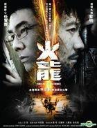 Fire Of Conscience (2010) (DVD) (Hong Kong Version)