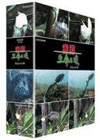Equator−赤道− DVD BOX <NHK DVD> DVD BOX