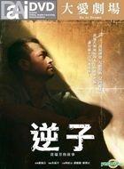 Ni Zi -  Huang Rui Fang De Gu Shi (DVD) (Taiwan Version)
