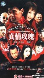 Xian Dai Du Shi Wu Da Yan Qing Dian Shi Lian Xu Ju Zhen Qing Mei Gui (Vol. 1-20) (China Version)