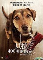 A Dog's Way Home (2019) (DVD) (Hong Kong Version)