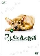 A Tale of Ululu's Wonderful Forest (DVD) (First Press Limited Edition) (Japan Version)