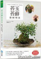 Tai Yu Tai Xian Yang Zhi Zhuan Shu : Xiang Shou Du Yi Wu Er De Xiu Zheng Feng Ge , Cong Zhi Zuo , Yang Hu Dao Zhuang Shi