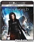 Underworld: Awakening (2012) (4K Ultra HD + Blu-ray) (Hong Kong Version)