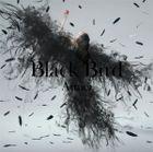 Black Bird / Tiny Dancers / Omoide wa Kirei de  (SINGLE+DVD)  (First Press Limited Edition) (Japan Version)