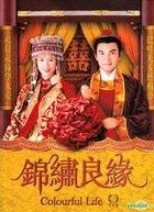 錦繡良緣 (DVD) (完) (TVB劇集)