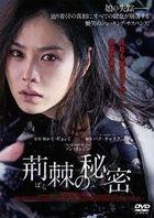 The Truth Beneath (DVD) (Japan Version)