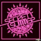 Secret Mini Album Vol. 5 - Secret Summer (Type B)