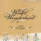 Sung Si Kyung - Winter Wonderland