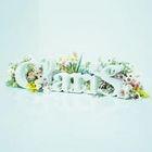 ClariS -SINGLE BEST 1st- (ALBUM+DVD) (First Press Limited Edition)(Japan Version)