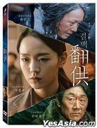 Innocence (2018) (DVD) (Taiwan Version)